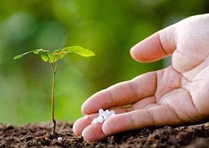 化肥检测项目